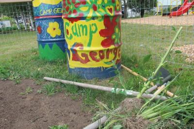 Community Gardens 2015 011